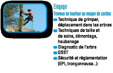 GLF-Elagage