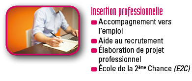 GV-Insertion_professionnelle
